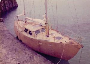 Calliope 339